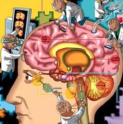 Conceito e tipos de esquizofrenia
